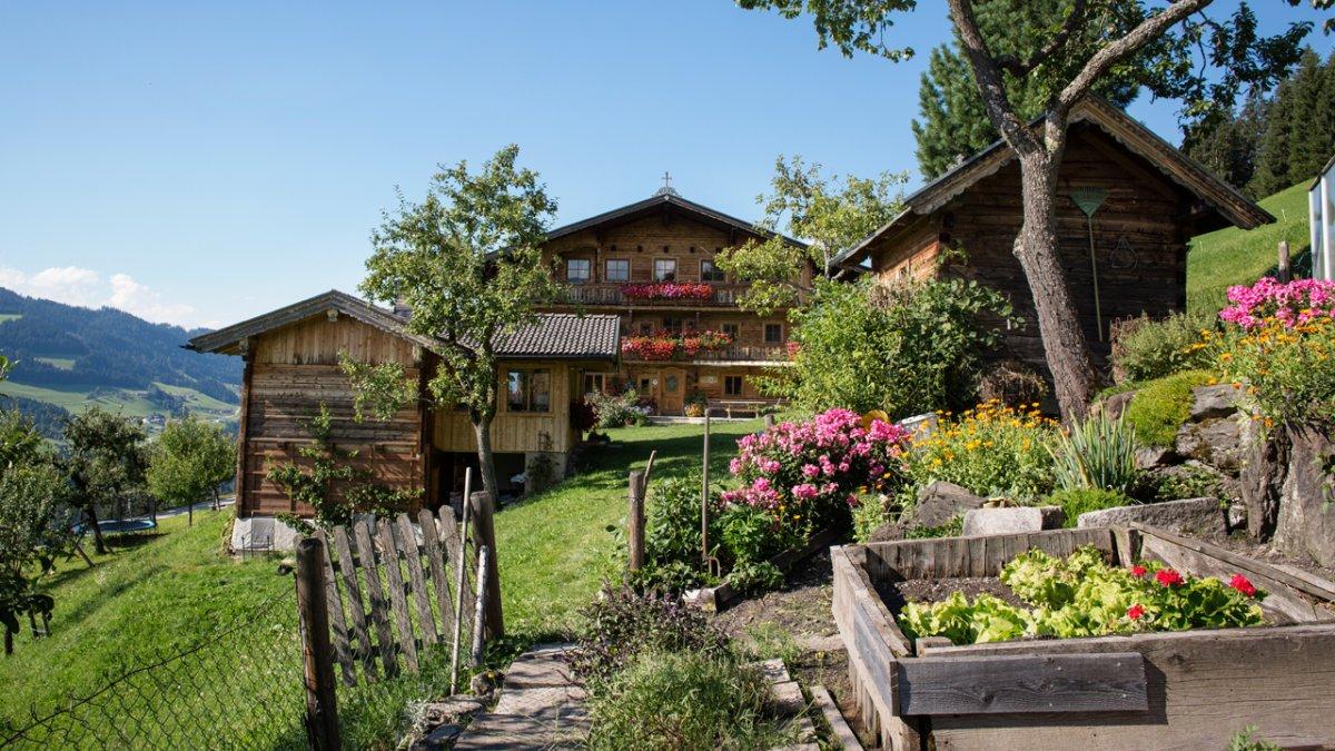 Fruits et légumes dans le jardin de la maison, © Tirol Werbung/Lisa Hörterer