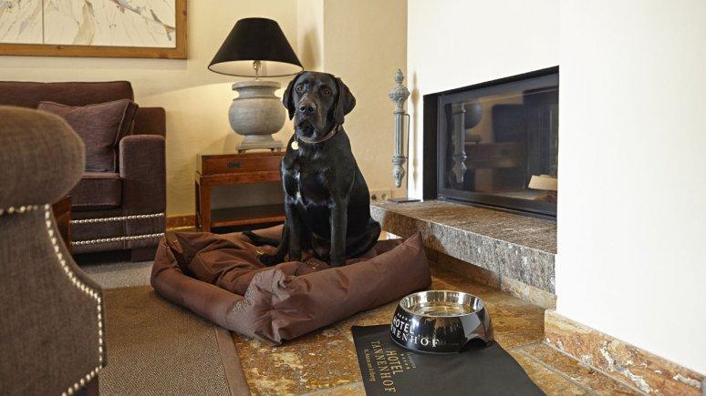 L'hôtel Tannenhof fait la joie des humains comme des canins, © Markus Gmeiner