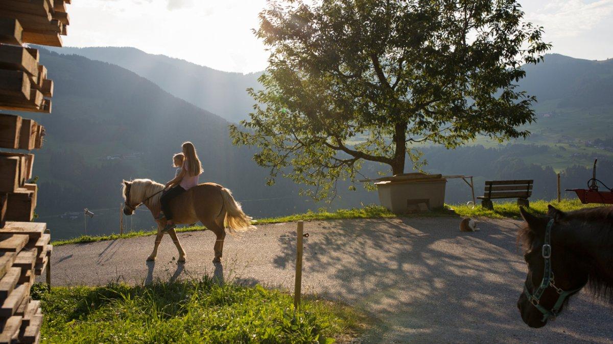 La ferme vous propose des balades à cheval dans les environs, © Tirol Werbung/Lisa Hörterer