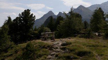 Voie de l'aigle étape 13 : Zirbenweg, © Tirol Werbung/Jenewein Markus