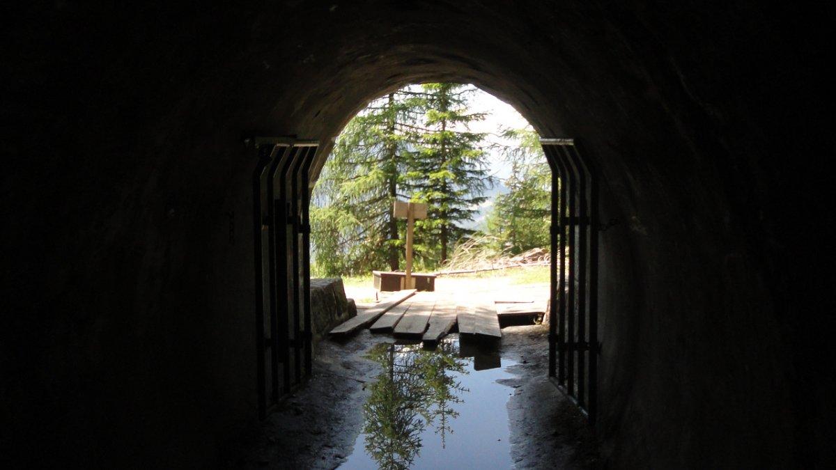 Le cheminement de l'eau dans le parc est tout à fait particulier. Des randonnées guidées vous en expliquent les secrets et les raisons., © Tirol Werbung/Ines Mayerl