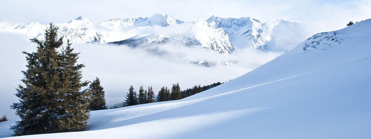 Gries am Brenner, Sattelberg, © Tirol Werbung/Martina Wiedenhofer