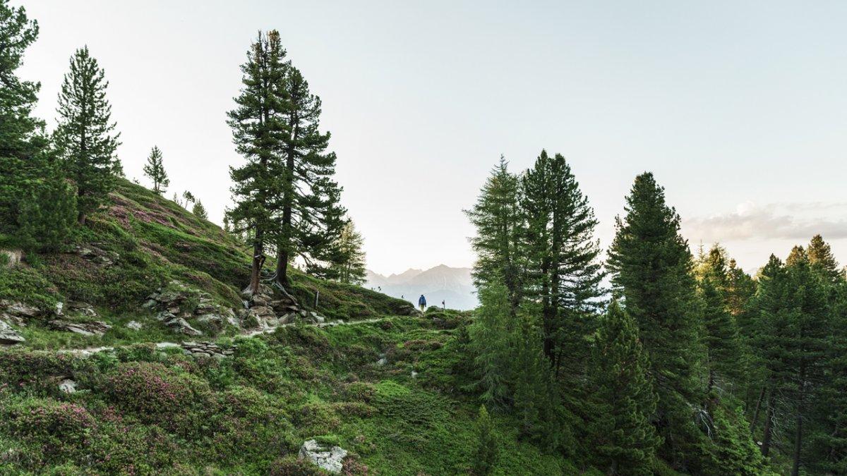 Un des plus beaux passages de l'Inntaler Höhenweg