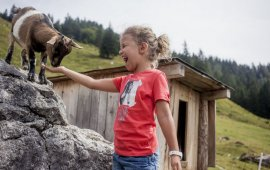 Vacances en famille à la Wilder Kaiser, © Tirol Werbung / Hans Herbig