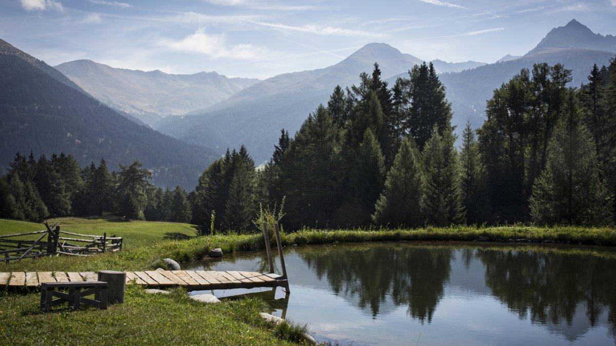 Le plan d'eau de la ferme fait la joie des petits et des grands amateurs de baignade, © Tirol Werbung/Lisa Hörterer