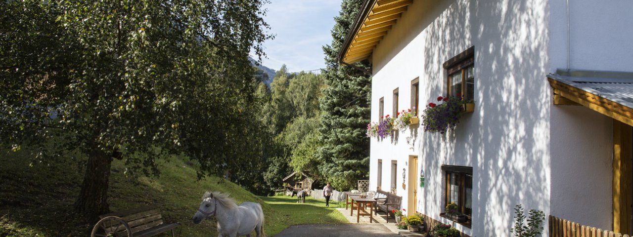 La ferme Sagenschneider's à Ried, © Tirol Werbung/Lisa Hörterer