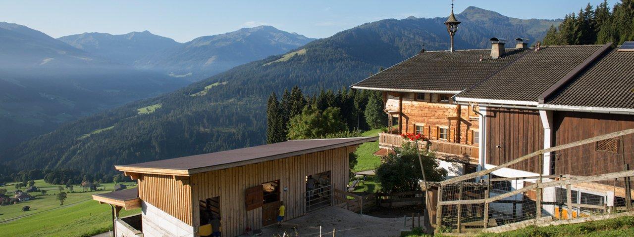 La ferme Flecklhof, Hopfgarten im Brixental, © Tirol Werbung/Lisa Hörterer