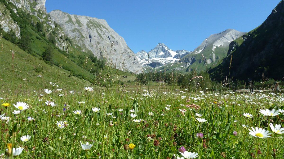 On a presque l'impression de pouvoir toucher le plus haut sommet autrichien du doigt. Le refuge Lucknerhaus est réputé pour être le point de départ idéal vers des randonnées magnifiques., © Alpengasthof Lucknerhaus