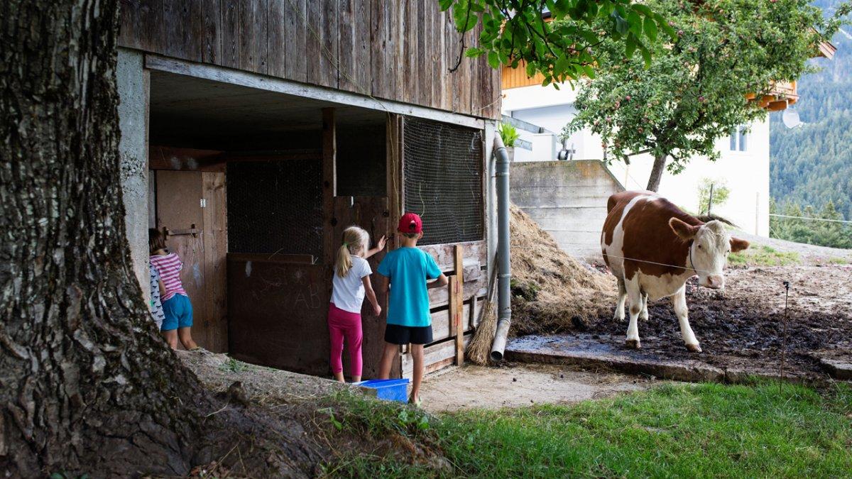 Les enfants découvrent chaque jour de nouvelles choses à la ferme, © Tirol Werbung/Lisa Hörterer