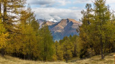 Les Eulenwiesen à Maria Waldrast, © Tirol Werbung