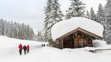 Randonnée hivernale à Seefeld - Wildmoos, © Olympiaregion Seefeld / Johannes Geyer