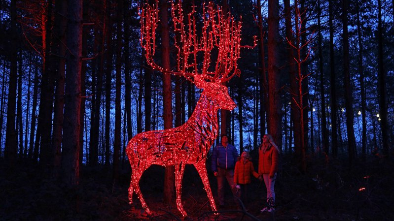 Lumagica Innsbruck, © MK Illumination
