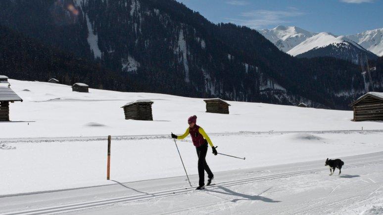 Ski de fond avec un chien, © Tirol Werbung/Lisa Hörterer