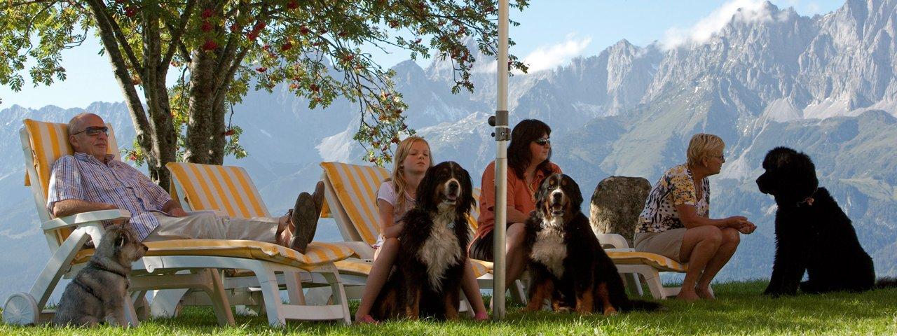 Müllneralm, vrai paradis pour chiens, © Tirol Werbung/Bernd Uhlig