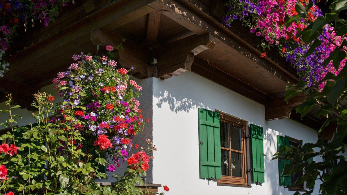 Les fleurs de Maria Fegers sont toute sa fierté, et on comprend vite pourquoi, © Tirol Werbung/Lisa Hörterer