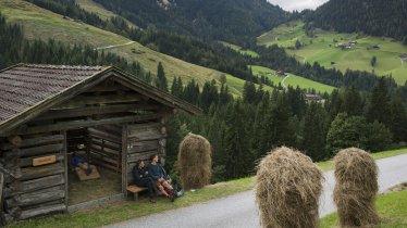 La Wildschönau en été, © Tirol Werbung/Alexander Ziegler