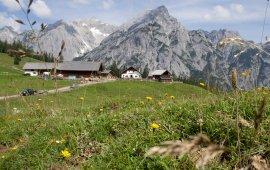 Vacances à l'alpage au Tyrol, © Tirol Werbung