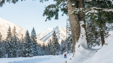 Randonnée hivernale de Falzthurnalm et Gramaialm, © ÖW/Robert Maybach