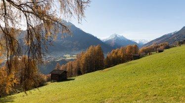Les pâturages de Telfs : les Telfer Wiesen, © Tirol Werbung